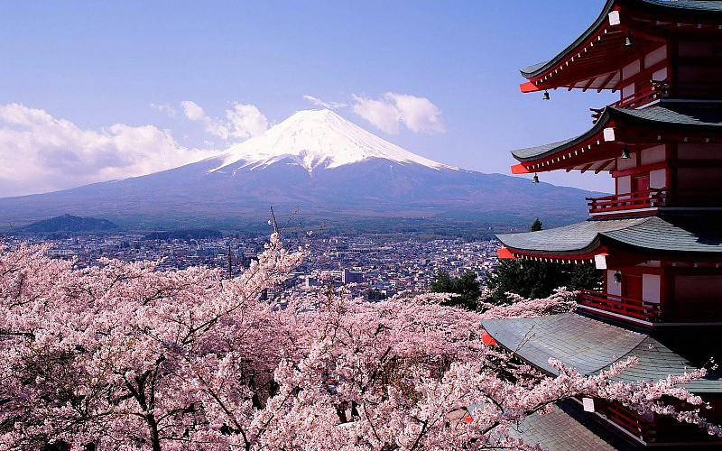 cherry-blossoms-japan-mount-fuji-city-architecture-pics-766771