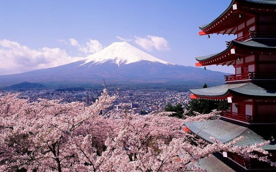 cherry-blossoms-japan-mount-fuji-city-architecture-pics-766771